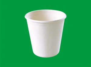 Disposable Cup for Cup Summit 3