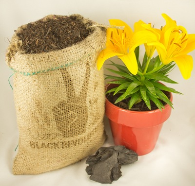 biochar soil replacement