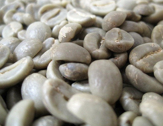 green coffee prices remain low