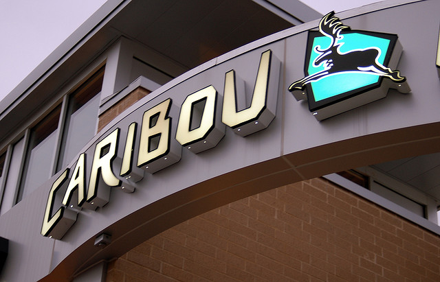 Caribou Coffee stores closing