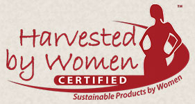 first Harvested by Women certified coffees come to U.S.
