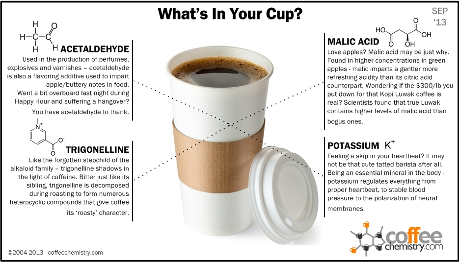 Antioxidants In One Cup Of Coffee