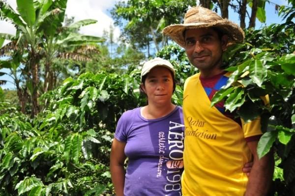 comsa fighting la roya on coffee plantation