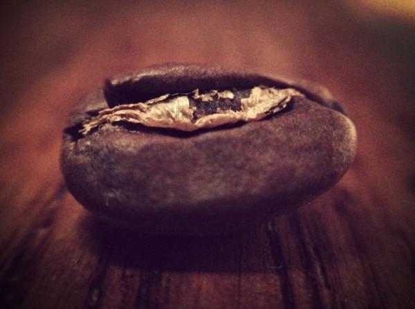 coffee bean roasted