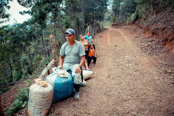 coffee workers in santa elena yarasquin