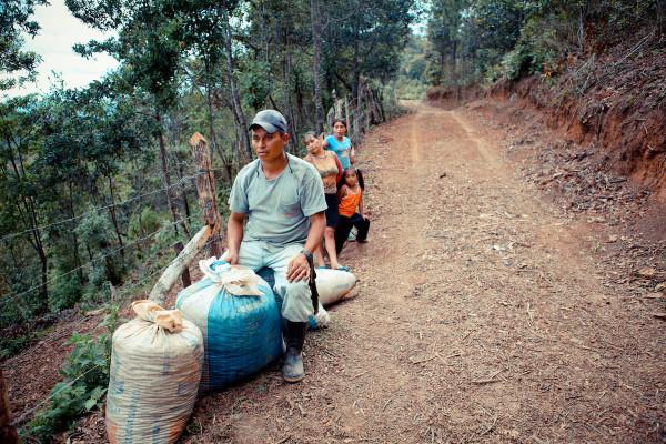 coffee workers in santa elena yarasquin