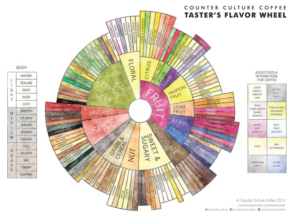 The Counter Culture Coffee Taster's Flavor Wheel (positive descriptors)