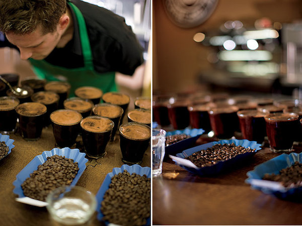 Cupping at Starbucks: The Sound of Silence (and Slurps)