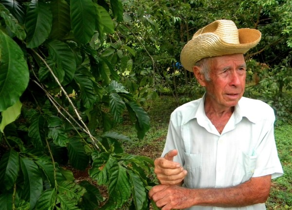coffee farm industry in Cuba