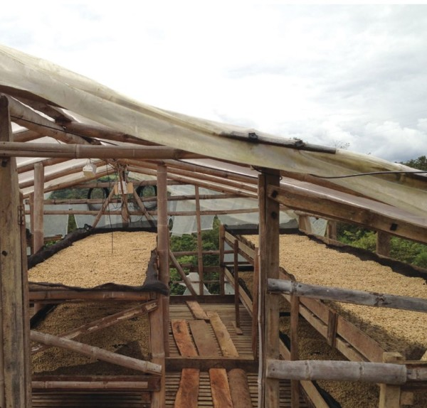 Drying facility at Finca Pensilvania. Photo by Cafe Imports.