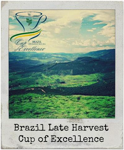 Brazil Cup of Excellence 2014 Naturals Record Double Digit Gains