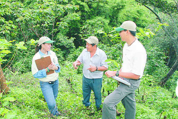 Revisions Could Relax Rainforest Alliance Coffee Standards
