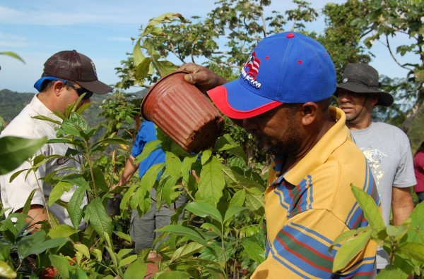 Coffee farmers in Costa Rica. Photo by the US Fish & Wildlife Service