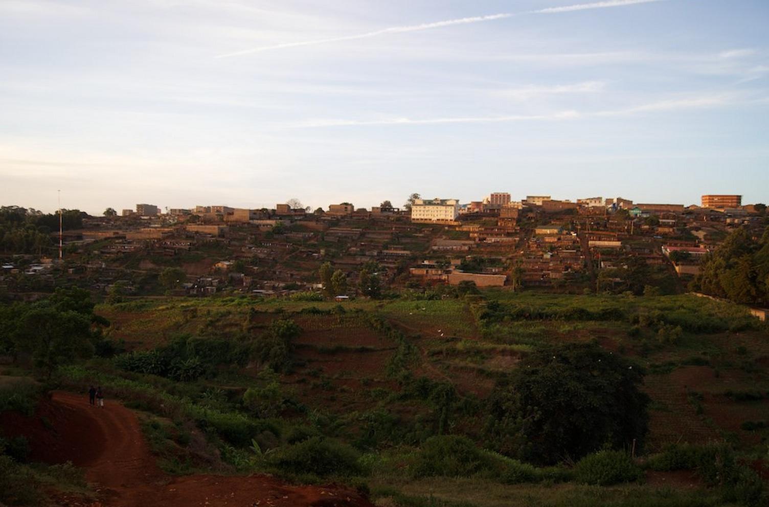 An Update On The Looming Coffee Crisis In Nyeri, Kenya