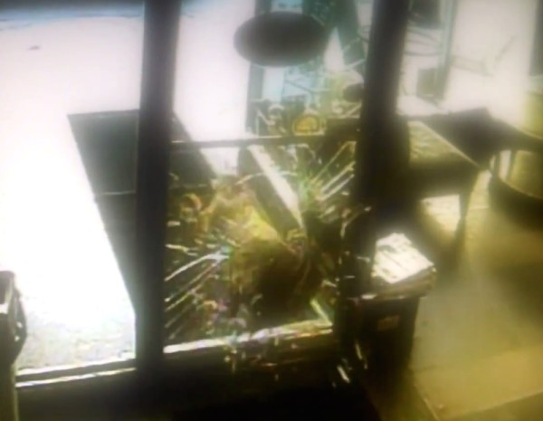 Deer Busts Through Front Door of New York Coffee Shop (video)