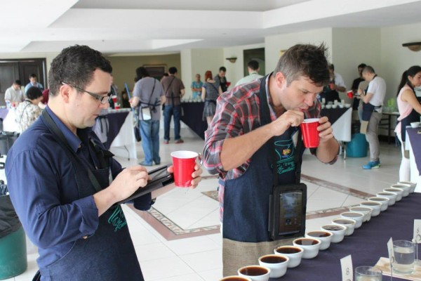 ACE Sets Cup of Excellence Online Auction Dates for Central America and Mexico Coffees
