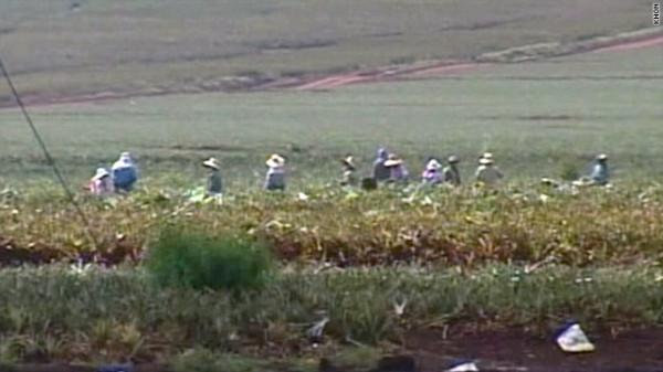 Hawaiian Coffee Farms Settle After Alleged Labor and Civil Rights Violations