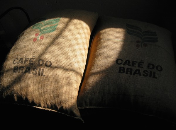 brasil coffee prices green beans