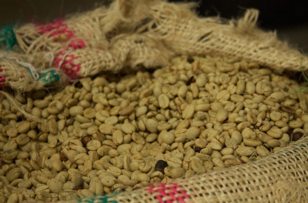 Leaked Presidential Report Suggests Widespread Reforms in Colombian Coffee