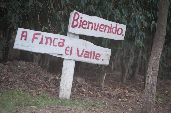 Finca El Valle in Antigua