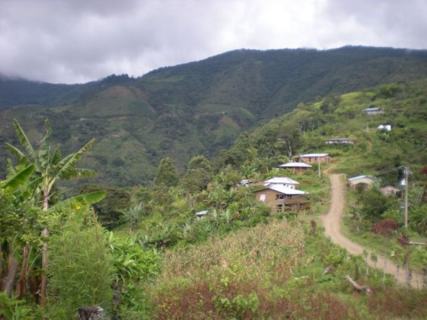 Fondo Paez land. Photo by Cooperative Coffees.