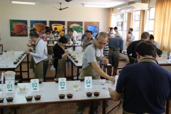 coffee cupping brazil