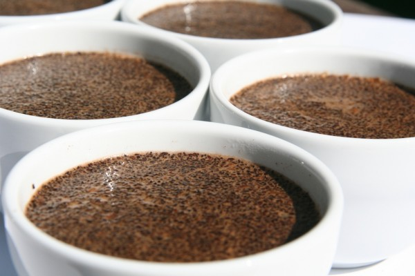 Coffee Review Presents Its Top Coffees of 2014