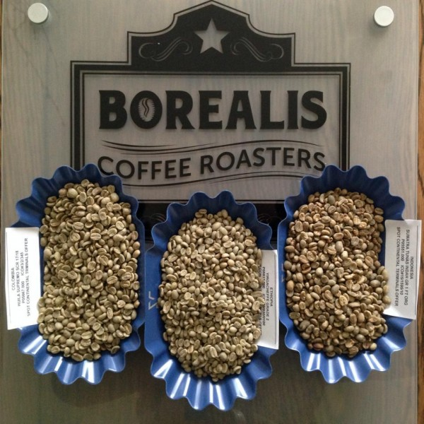Borealis coffee logo green