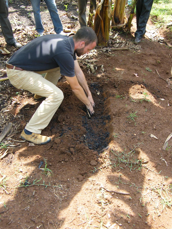 biochar in soil