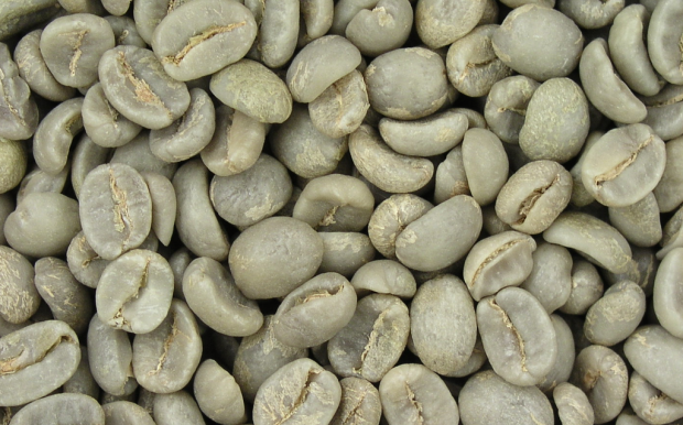 Coffee Prices Sink to 18-Month Low but Upward Surges May Be Coming