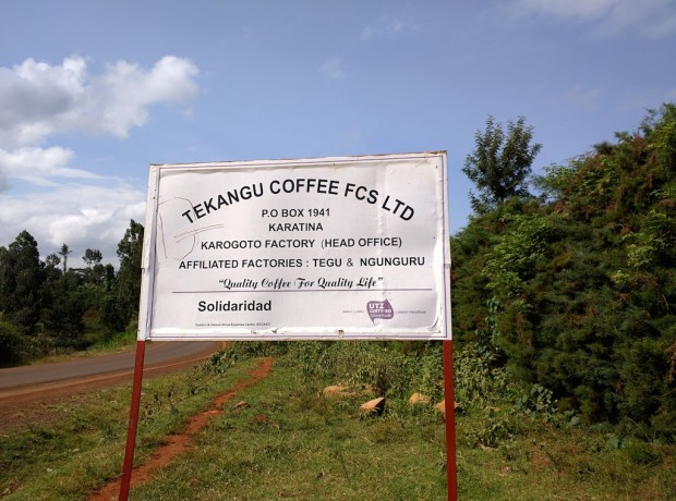 Nyeri country coffee tekangu society