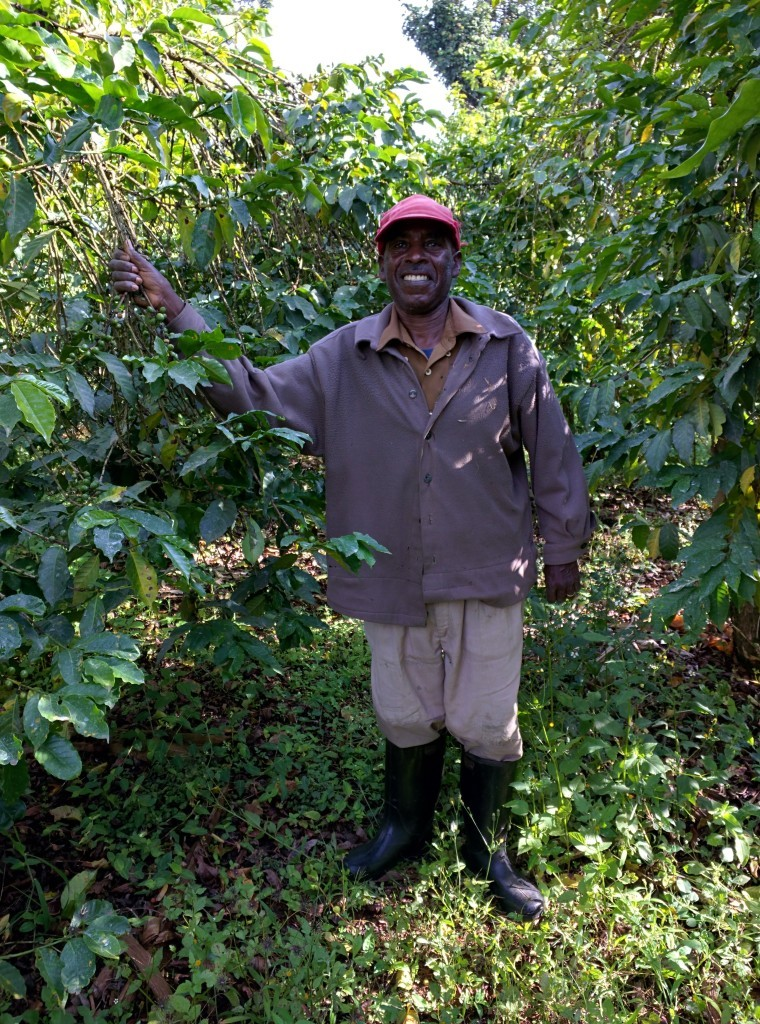 smallholder farmer in Nyeri Kenya