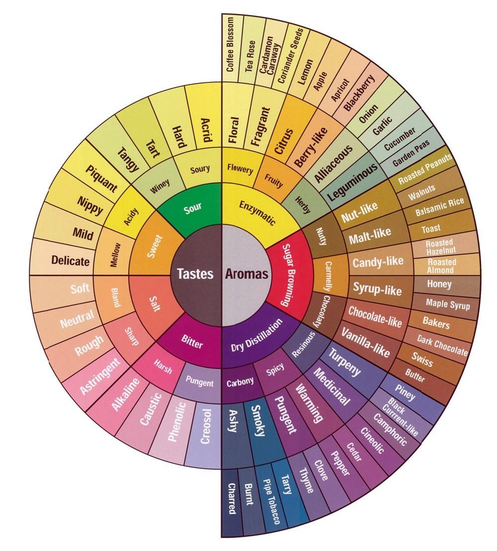 "The SCAA Coffee Taster's Flavor Wheel. Might a revised addition include ""fat"" or ""fatty?"""