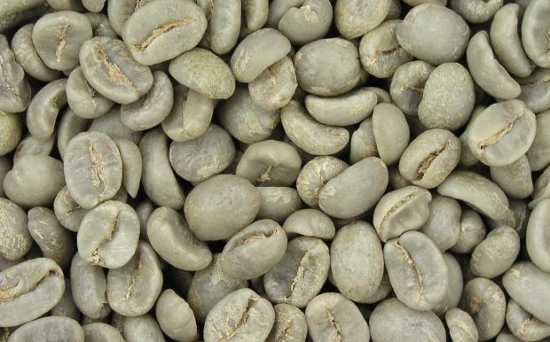 Coffee Prices Remain Low Amid El Niño Forecast and Depreciating Currencies
