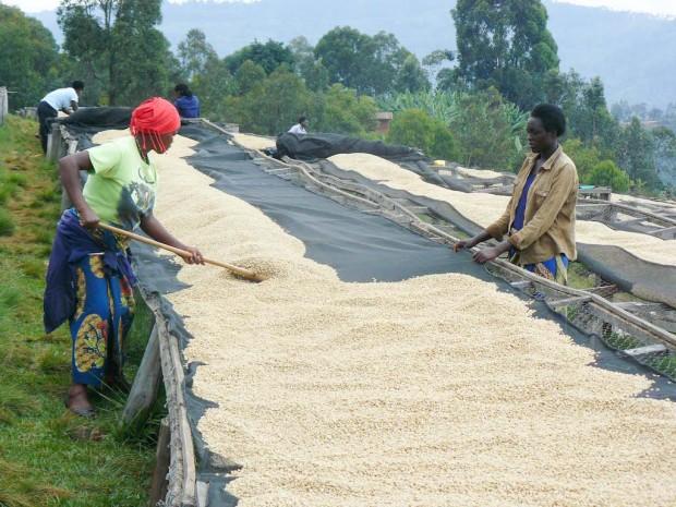 The Dukunde Jawa cooperative