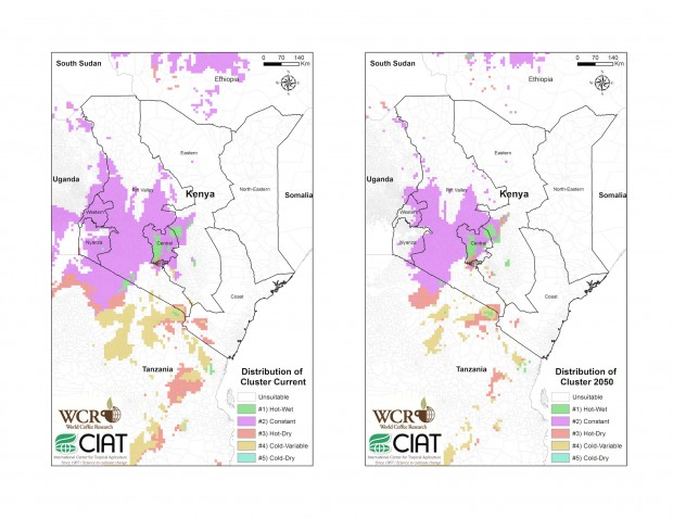 """Mapping current and future climatic conditions and """"suitable"""" growing land in East Africa."""