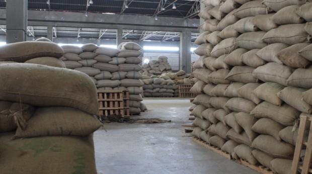 Ethiopia Commodity Exchange Launches $4.5 Million Traceability System