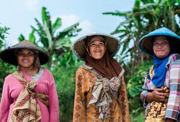 Women-Farmer-Focused Java Mountain Coffee Inks Hilton Deal