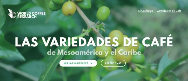 coffee variety catalog