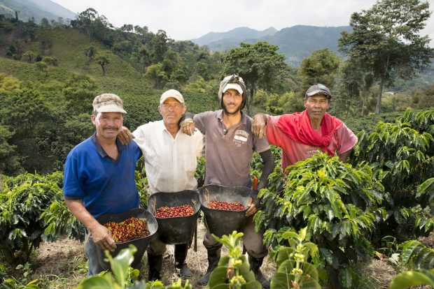 Coffee Farmworkers: The Next Step, from Research to Action