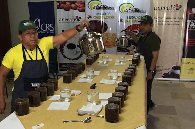 Quality Comes Through at Ecuador's First Ever National Robusta Competition
