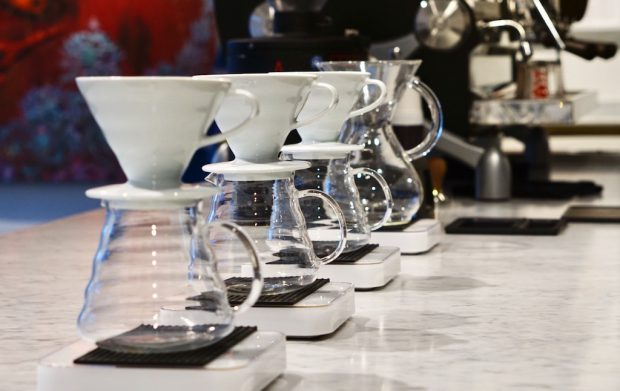 Bold Bean Coffee Roasters Jacksonville Florida