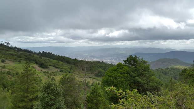 Region of Vallecillos, Department of Francisco Morazan, where Guama Danta is grown.