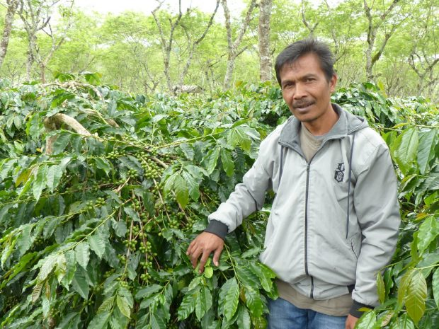 Empty Cherries: The Impact of Climate Change in Sumatra