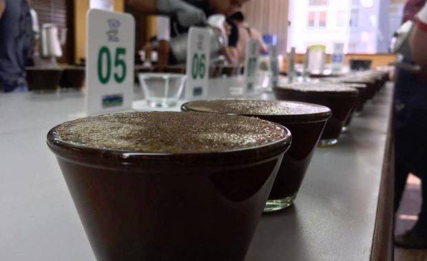 Brazil Specialty Coffee Association to Offer Some US Buyers an Expenses-Paid Trip