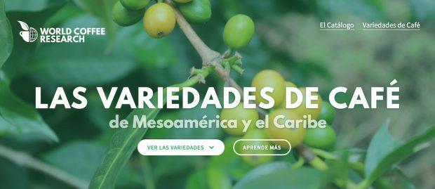 coffee-variety-catalog