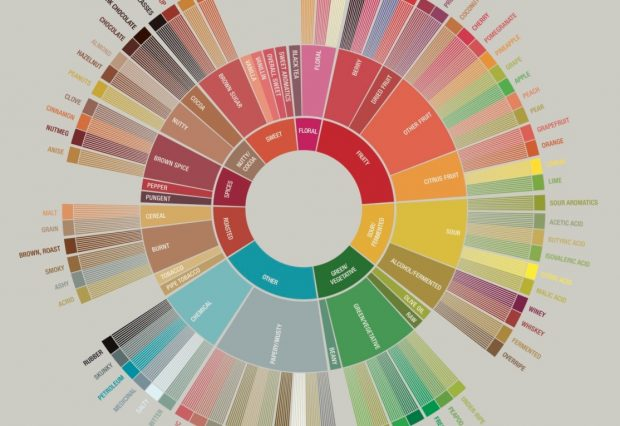 Image taken from the SCA Coffee Taster's Flavor Wheel.
