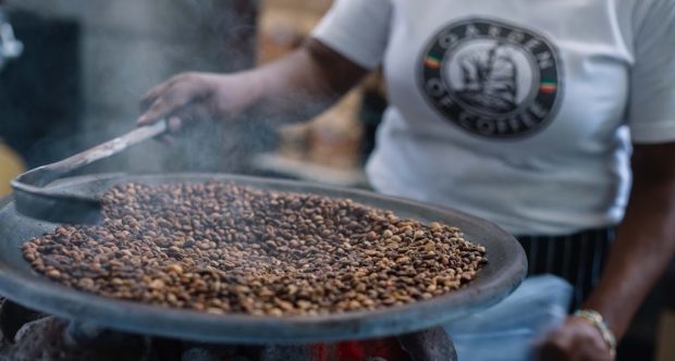 Garden of Coffee Ethiopia