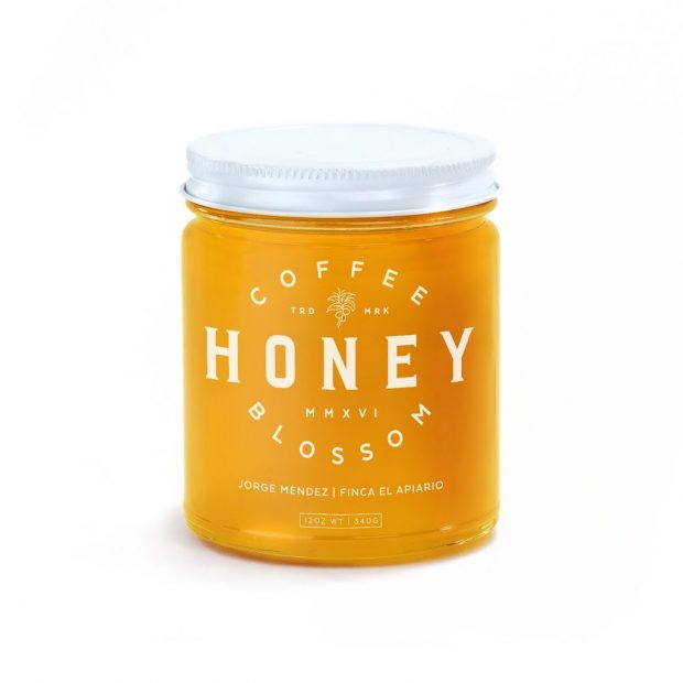coffee blossom honey el apiario