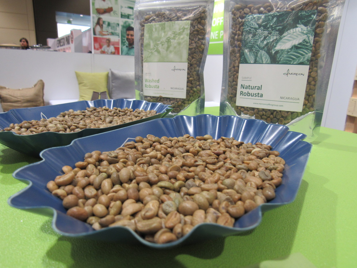 Mercon robusta offerings at the SCA Expo in Seattle. Images courtesy of Mercon Coffee Group.